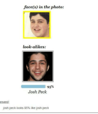 #TumblrMadeMeDoIt: faces in the phot  look-alikes  95%  Josh Peck  nsand  josh peck looks 95% like josh peck #TumblrMadeMeDoIt