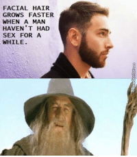 Fun fact about beards.: FACIAL HAIR  GROWS FASTER  WHEN A MAN  HAVEN'T HAD  SEX FOR A  WHILE Fun fact about beards.