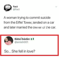 Love, Baba, and Eiffel Tower: FACIT Fact  @Fact  A woman trying to commit suicide  from the Eiffel Tower, landed on a car  and later married the owner of the car.  Babá ibàdàn II  @smish001  So... She fell in love? Yes I know about the uselessredcircle