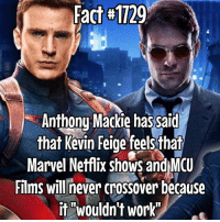 "I would love to see this but nooo...... fact via @amzingfantasy: Fact #1129  Anthonu Mackie has said  that Kevin Feige feels that  Marvel Netflix shows andMCU  Films will never crossover because  it ""wouldn't work"" I would love to see this but nooo...... fact via @amzingfantasy"