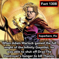 Memes, Superhero, and Infiniti: Fact 1308  Superhero Fix  When Adam Warlock gained the full  might of the Infinity Gauntlet, he  was able to shut off DraxThe  Destroyer's hunger to kill Thanos. I wonder if Adam Warlock will appear in Infinity War 🤔 - thanos guardiansofthegalaxy marvel avengers