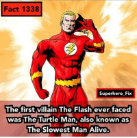 That's ironic. - theflash dc justiceleague batman superman comics: Fact 1338  Superhero Fix  The first villain The Flash ever faced  was The Turtle Man, also known as  The Slowest Man Alive. That's ironic. - theflash dc justiceleague batman superman comics