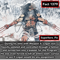 Memes, Superhero, and Wolverine: Fact 1379  Superhero Fix  During his time  with WeaponX, Logan was  heavily sedated and controlled through a helmet  and turned him into a puppet for the Program.  He was even forced to kill an entire town, curious  to see if Logan would do any assignment. This is brutal... 😨😰 - wolverine xmen avengers captainamerica marvel