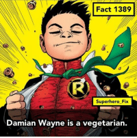 A lot of superheroes are vegetarians. - Source: Batman Incorporated - batman robin teentitans nightwing dc comics: Fact 1389  Superhero Fix  Damian Wayne is a vegetarian. A lot of superheroes are vegetarians. - Source: Batman Incorporated - batman robin teentitans nightwing dc comics