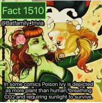 Facts, Family, and Guns: Fact 1510  (a Bat family!trivia  n Some comics Poison Ivy is depicted  as more plant than human, breathing  CO2 and requiring sunlight to Survive. Flash was lit tonight. Nothing too special but I think they are saving their big guns for next week! And the shit in the Trailer of Barry, Wally and Jesse looks so cool! What did you think of Flash?! ⚡️ theflash poisonivy batman75 warnerbros