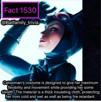 "Clothes, Memes, and Wonder Woman: Fact 1530  @Batfamily trivia  Catwoman's costume is designed to give her maximum  flexibility and movement while providing her some  stealth The material is a thick insulating cloth, protecting  her from cold and wet as well as being fire retardant. The Kids Choice Awards are on tonight. And I know you are already saying; - - ""@batfamily_trivia you are a grown adult why are you watch the KCAs?"" - - Because there's a New Wonder Woman trailer coming! batman75 catwoman batman dickgrayson dccomics wb warnerbros"