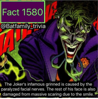 Batman, Family, and Love: Fact 1580  @Bat family trivia  The Joker's infamous grinned is caused by the  paralyzed facial nerves. The rest of his face is also  damaged from massive scaring due to the smile. A face only a mother can love? Or rather, Harley Quinn. 🤷🏽‍♀️ batman75 batman dcau thejoker joker75 DCEU DCComics WarnerBros