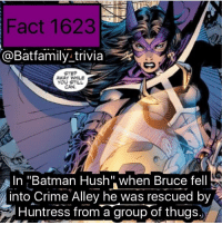 "Batman, Crime, and Memes: Fact 1623  @Batfamily_trivia  STEP  AWAY WHILE  YOU STILL  CAN.  In ""Batman Hush when Bruce fell  into Crime Alley he was rescued by  Huntress from a group of thugs. Fact Credit: @arg11271997 - - Anyone watch Nostalgic Critic and NerdSync's reviews of SpiderManHomecoming excellent. They really hammered the pros and the cons of the film. I say check them out. batman75 huntress BatmanHush dccomics dc dcau"