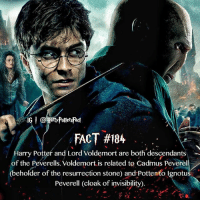 Anybody knew this?!: FACT #184  darry Potter and Lord Voldemort are both descendants  of the Peverells. Voldemort is related to Cadmus Peverell  (beholder of the resurrection stone) and Potten to Ignotus  Peverell (cloak of invisibility).  27 Anybody knew this?!