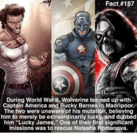 """~ Dc & Marvel Universe: Fact #187  During World War II, Wolverine teamed up with  Captain America and Bucky Barnes in Madripoor.  The two were unaware of his mutation, believing  him to merely be extraordinarily lucky and dubbed  him """"Lucky James."""" One of their first significant  missions was to rescue Natasha Romanova. ~ Dc & Marvel Universe"""