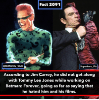 Batman, Facts, and Jim Carrey: Fact 2091  @Batfamily_trivia  Superhero Fix  According to Jim Carrey, he did not get along  with Tommy Lee Jones while working on  Batman: Forever, going as far as saying that  he hated him and his films. Fact credit to @superhero_fix I highly suggest following him. He has excellent content on superhero facts! batman DCComics TwoFace Riddler DC