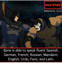 Did you all like the database story idea? If you haven't seen it it's on the main page of my profile as a highlight. It took over 6 hours to do surprisingly Bane YoungJustice Batman DCComics Batman80 YoungJusticeOutsiders: Fact 2103  @Batfamily_trivia  Bane is able to speak fluent Spanish,  German, French, Russian, Mandarin,  English, Urdu, Farsi, and Latin. Did you all like the database story idea? If you haven't seen it it's on the main page of my profile as a highlight. It took over 6 hours to do surprisingly Bane YoungJustice Batman DCComics Batman80 YoungJusticeOutsiders