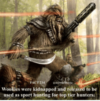 Jedi, Memes, and Nerd: FACT 234  astarwars.trivia  Wookies were kidnapped and released to be  used as sport hunting for top tier hunters. 🔹What would you hunt in starwars?🔹 - starwars stormtrooper firstorderstormtrooper superbowl swtfa jedi sith more movie me cool instagood dc marvel follow like awesome nerd geek nerdness force jedi sith