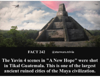 "Facts, Jedi, and Memes: FACT 242astarwars.trivia  The Yavin 4 scenes in ""A New Hope"" were shot  in Tikal Guatemala. This is one of the largest  ancient ruined cities of the Maya civilization. 🔹Comment below what you want facts on next!🔹 - starwars stormtrooper firstorderstormtrooper superbowl swtfa jedi sith more movie me cool instagood dc marvel follow like awesome nerd geek nerdness force jedi sith"