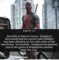 Cheating, Head, and Marvel Comics: Fact 286  Recently in Marvel Comics, Deadpool  discovered that his current wife (Shiklah  has been cheating on him with some of her  henchmen. So naturally, Deadpool decapitated  one of her goons & dropped his severed  head into a jar If you could make Deadpool marry literally anyone , who would you pair him with ? 💑💘 - - - Marvel Comics Deadpool FantasticFour Daredevil DoctorStrange MoonKnight IronFist LukeCage AntMan Inhumans StarWars MarvelComics
