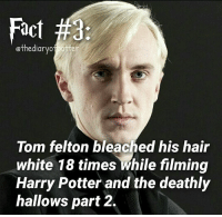 Comment '😍' if you knew this and '😮' if you didn't! harrypotter thechosenone theboywholived gryffindor dracomalfoy theboywhohadnochoice slytherin harrypotterfact harrypotterfacts • Potterheads⚡count: 17,355: Fact #3  ethediaryo  otter  Tom felton bleached his hair  white 18 times While filming  Harry Potter and the deathly  hallows part 2. Comment '😍' if you knew this and '😮' if you didn't! harrypotter thechosenone theboywholived gryffindor dracomalfoy theboywhohadnochoice slytherin harrypotterfact harrypotterfacts • Potterheads⚡count: 17,355