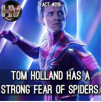 Ironic, Memes, and Spiders: FACT #319  TOM HOLLAND HAS A  STRONG FEAR OF SPIDERS Ironic. 🕷😂
