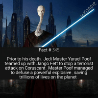 Facts, Jedi, and Memes: Fact # 345  Prior to his death, Jedi Master Yarael Poof  teamed up with Jango Fett to stop a terrorist  attack on Coruscant. Master Poof managed  to defuse a powerful explosive, saving  trillions of lives on the planet Hey guys , welcome back to 'Star Wars Weekend' . Like always , I'll be posting tons of Star Wars facts all weekend long 🤘 make sure to turn on post notifications , if you're interested 😊