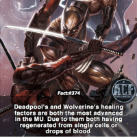 Memes, Would You Rather, and Power: Fact #374  WSMCOMICFA  Deadpool's and Wolverine's healing  factors are both the most advanced  in the MU. Due to them both having  regenerated from single cells or  drops of blood - Im gonna delve deeper into these two eventually. • -QOTD?!: What power would you rather have?!?