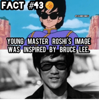 Dragonball, Memes, and Bruce Lee: FACT  (#43  YOUNG MASTER ROSHIS IMAGE  MACE  WAS INSPIRED BY BRUCE LEE Did you know? 🤔🐲🉐 • Akira took many inspirations from Bruce Lee's films. DbzFact DragonBall MasterRoshi BruceLee