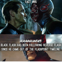 Who else liked seeing Black Flash in Legends!? Can't wait to see more.: FACT #65  FACT #65  BLACK FLASH HAS BEEN FOLLOWING REVERSE FLASH  SINCE HE CAME OUT OF THE FLASHPOINT TIMELINE Who else liked seeing Black Flash in Legends!? Can't wait to see more.