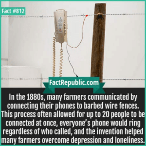 Phone, Connected, and Depression: Fact #812  FactRepublic.com  In the 1880s, many farmers communicated by  connecting their phones to barbed wire fences.  This process often allowed for up to 20 people to be  connected at once, everyone's phone would ring  regardless of who called, and the invention helped  many farmers overcome depression and loneliness. Barbed wire telephone