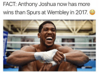 Memes, Spurs, and 🤖: FACT Anthony Joshua now has more  wins than Spurs at Wembley in 2017. 😳😂