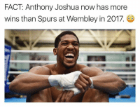 Memes, Spurs, and 🤖: FACT Anthony Joshua now has more  wins than Spurs at Wembley in 2017. 😂😂😂😂