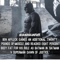 Batfleck doesn't mess around. 💪🏻 🦇 Comment your favorite Batman actor!: FACT  BEN AFFLECK GAINED AN ADDITIONAL TWENTY  POUNDS OF MUSCLE AND REACHED EIGHT PERCENT  BODY FAT FOR HIS ROLE AS BATMAN IN BATMAN  V SUPERMAN: DAWN OF JUSTICE. Batfleck doesn't mess around. 💪🏻 🦇 Comment your favorite Batman actor!