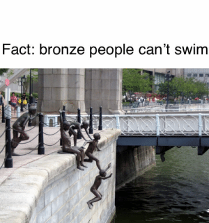 Racist, Bronze, and People: Fact: bronze people can't swim Not racist, but
