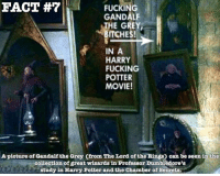 ~Dobby: FACT  FUCKING  GANDALF  THE GREY,  BITCHES!  IN A  HARRY  FUCKING  POTTER  MOVIE!  A picture of Gandalfthe Grey Cfrom The Lord ofthe Rings) can be seen in the  collection of great wizards in Professor Dumbledore's  study in Harry Potter and the Chamber of Secrets. ~Dobby