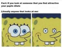 Club, Tumblr, and Blog: Fact: If you look at someone that you find attractive  your pupils dilate  Litreally anyone that looks at me: laughoutloud-club:  Too real