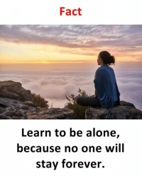 being alone: Fact  Learn to be alone,  because no one will  stay forever.