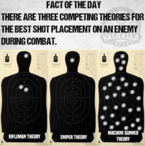 Best, Never, and Team Fortress: FACT OF THE DAY  THERE ARE THREE COMPETING THEORIES FOR  THE BEST SHOT PLACEMENT ON AN ENEMY  VALHALLA  DURING COMBAT.  MACHINE GUNNER  RIFLEMAN THEORY  SNIPER THEORY  THEORY I never miss -Heavy from team fortress-
