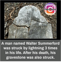 Life, Memes, and Death: Fact Point  A man named Walter Summerford  was struck by lightning 3 times  in his life. After his death, his  gravestone was also struck. Trouble chaser 😋