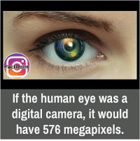 did you know fact point , education amazing dyk unknown facts daily facts💯 didyouknow follow follow4follow f4f factpoint instafact awesome world worldfacts like like4ike tag friends Don't forget to tag your friends 🤘: Fact Point  If the human eye was a  digital camera, it would  have 576 megapixels. did you know fact point , education amazing dyk unknown facts daily facts💯 didyouknow follow follow4follow f4f factpoint instafact awesome world worldfacts like like4ike tag friends Don't forget to tag your friends 🤘