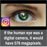 human eyes: Fact Point  If the human eye was a  digital camera, it would  have 576 megapixels.