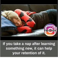 Listen up school!!: Fact Point  If you take a nap after learning  something new, it can help  your retention of it. Listen up school!!