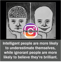Memes, 🤖, and Educationals: Fact Point  Intelligent people are more likely  to underestimate themselves,  While ignorant people are more  likely to believe they're brilliant. did you know fact point , education amazing dyk unknown facts daily facts💯 didyouknow follow follow4follow f4f factpoint instafact awesome world worldfacts like like4ike tag friends Don't forget to tag your friends 🤘