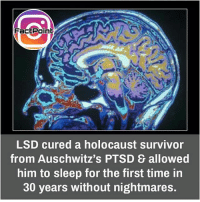 Memes, Survivor, and Holocaust: Fact Point  LSD cured a holocaust survivor  from Auschwitz's PTSD allowed  him to sleep for the first time in  30 years without nightmares. Follow our page for more Facts 😇 Don't forget to tag your friends 💖