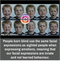 did you know fact point , education amazing dyk unknown facts daily facts💯 didyouknow follow follow4follow f4f factpoint instafact awesome world worldfacts like like4ike tag friends Don't forget to tag your friends 🤘: Fact Point  mage just for Tepresentation  People born blind use the same facial  expressions as sighted people when  expressing emotions, meaning that  our facial expressions are innate  and not learn  behaviour. did you know fact point , education amazing dyk unknown facts daily facts💯 didyouknow follow follow4follow f4f factpoint instafact awesome world worldfacts like like4ike tag friends Don't forget to tag your friends 🤘