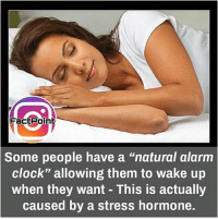 """Clock, Facts, and Memes: Fact Point  Some people have a """"natural alarm  Clock"""" allowing them to wake up  when they want This is actually  caused by a stress hormone. Follow our page for more Facts 😇 Don't forget to tag your friends 💖"""