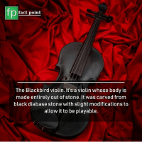 Memes, Black, and 🤖: fact point  The Blackbird violin. It's a violin whose body is  made entirely out of stone. It was carved from  black diabase stone with slight modifications to  allow it to be playable.