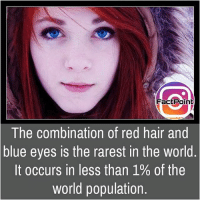 Follow our page for more Facts 😇 Don't forget to tag your friends 💖: Fact Point  The combination of red hair and  blue eyes is the rarest in the World  It occurs in less than 1% of the  world population. Follow our page for more Facts 😇 Don't forget to tag your friends 💖