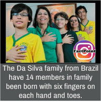 Brazil: Fact Point  The Da Silva family from Brazil  have 14 members in family  been born with six fingers on  each hand and toes.