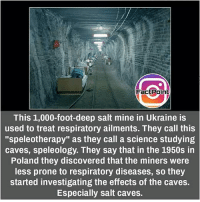 "Memes, Ukraine, and 🤖: Fact Point  This 1,000-foot-deep salt mine in Ukraine is  used to treat respiratory ailments. They call this  ""speleotherapy"" as they call a science studying  caves, speleology. They say that in the 1950s in  Poland they discovered that the miners were  less prone to respiratory diseases, so they  started investigating the effects of the caves.  Especially salt caves. did you know fact point , education amazing dyk unknown facts daily facts💯 didyouknow follow follow4follow f4f factpoint instafact awesome world worldfacts like like4ike tag friends Don't forget to tag your friends 🤘"