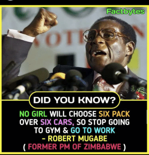 Why the fuck are you taking advice from a dictator: Factbytes  TOT  DID YOU KNOW?  NO GIRL WILL CHOOSE SIX PACK  OVER SIX CARS, SO STOP GOING  TO GYM & GO TO WORK  - ROBERT MUGABE  (FORMER PM OF ZIMBABWE) Why the fuck are you taking advice from a dictator
