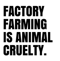 Animals, Love, and Memes: FACTORY  FARMING  IS ANIMAL  CRUELTY Love animals? Then leave them off your plate. govegan vegansofig mercyforanimals loveanimals kindness truth animallovers