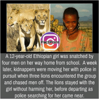 Ethiopians, Facts, and Friends: FactPoint  A 12-year-old Ethiopian girl was snatched by  four men on her way home from school. A week  later, kidnappers were moving her with police in  pursuit when three lions encountered the group  and chased men off. The lions stayed with the  girl without harming her, before departing as  police searching for her came near Follow our page for more Facts 😇 Don't forget to tag your friends 💖