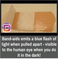 Memes, Band, and 🤖: FactPoint  Band-aids emits a blue flash of  light when pulled apart visible  to the human eye when you do  it in the dark! did you know fact point , education amazing dyk unknown facts daily facts💯 didyouknow follow follow4follow f4f factpoint instafact awesome world worldfacts like like4ike tag friends Don't forget to tag your friends 🤘